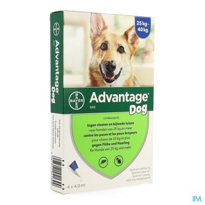 Advantage 400 Honden 25<40kg 4x4ml